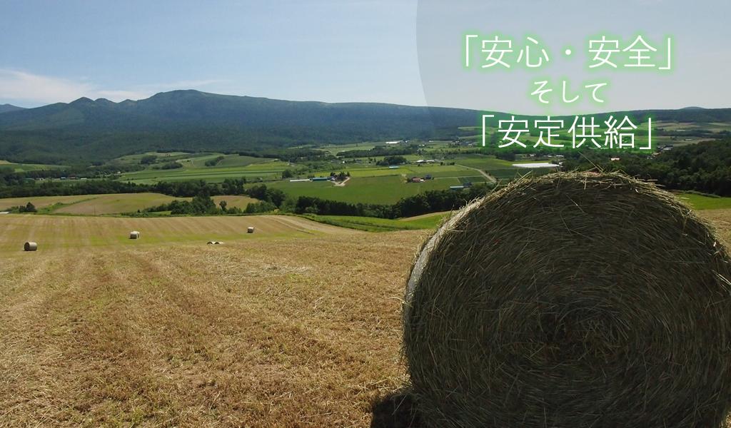 北海道産チモシー(ロール)