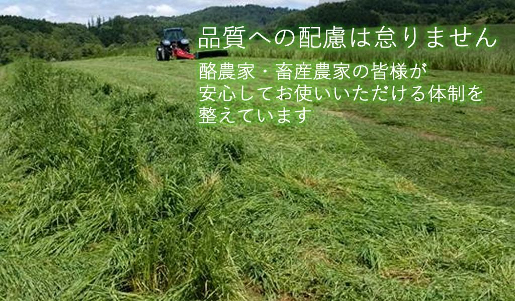 北海道産稲ワラ